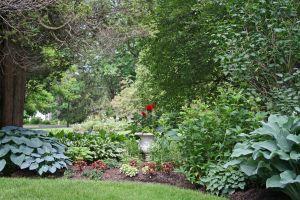 litchfield_garden_small